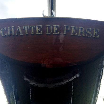 """Lacustre 6 """"Chatte de Perse"""""""