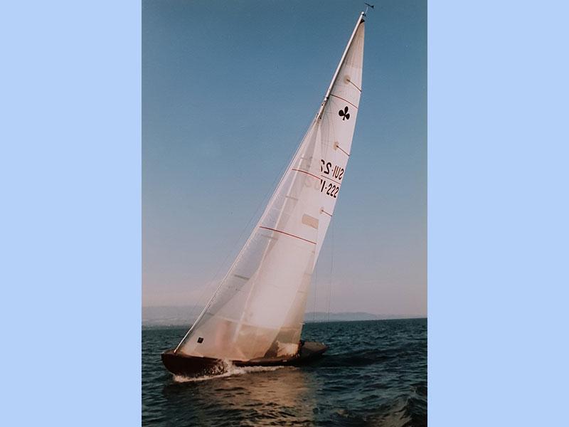 """Lacustre 222 """"Requin-Tigre"""""""