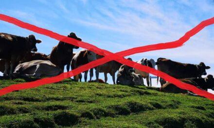Lacustre-Herbstwanderung abgesagt